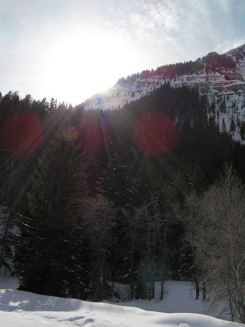 Jan2011 030